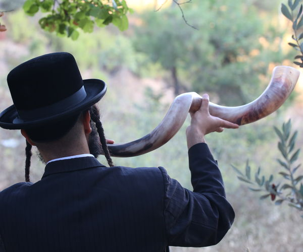 Ortodox Jew Blowing The Shofar